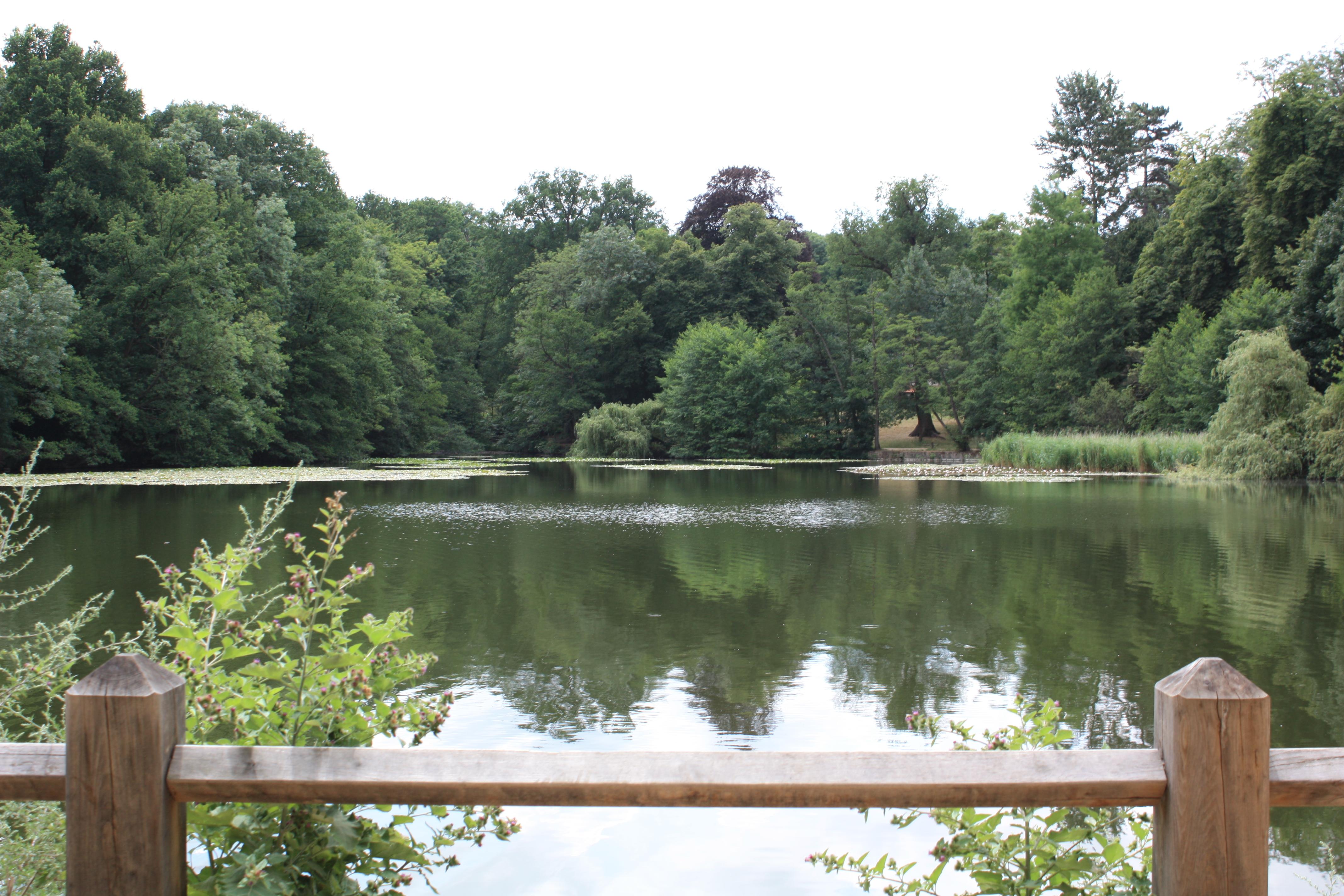 Promenade à l'étang - Albert Samain ForetMalmaison