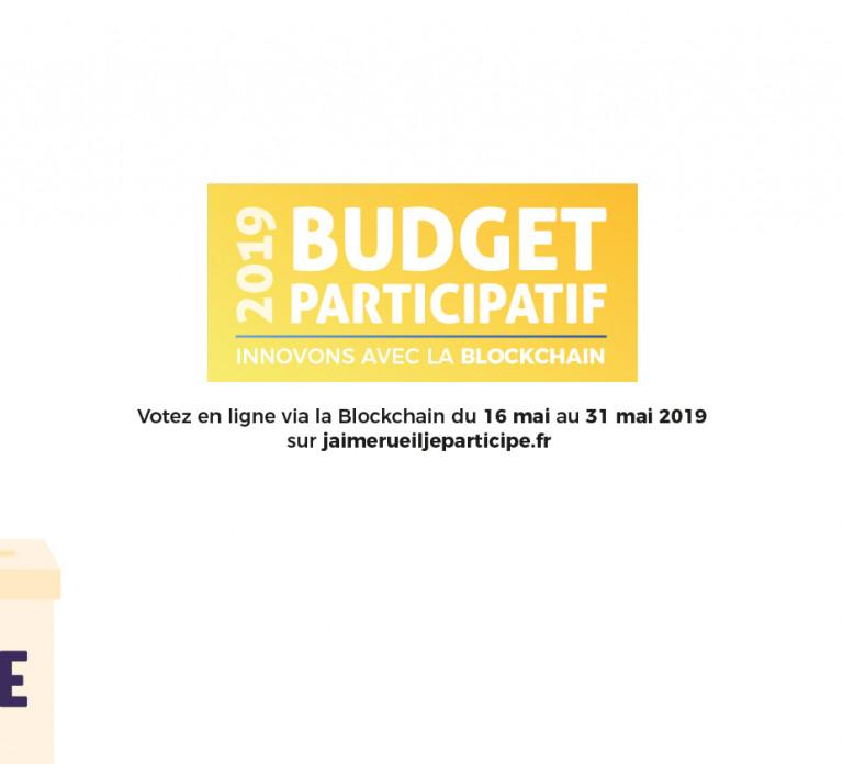 Budget_vote_carrousel